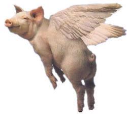 Mutert, dødelig virus, blanding av svin og fugl (avisand).